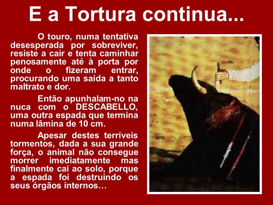 E a Tortura continua...