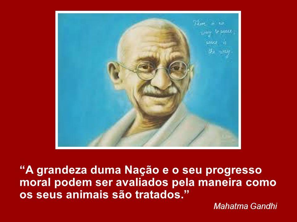 A grandeza duma Nação e o seu progresso moral podem ser avaliados pela maneira como os seus animais são tratados.