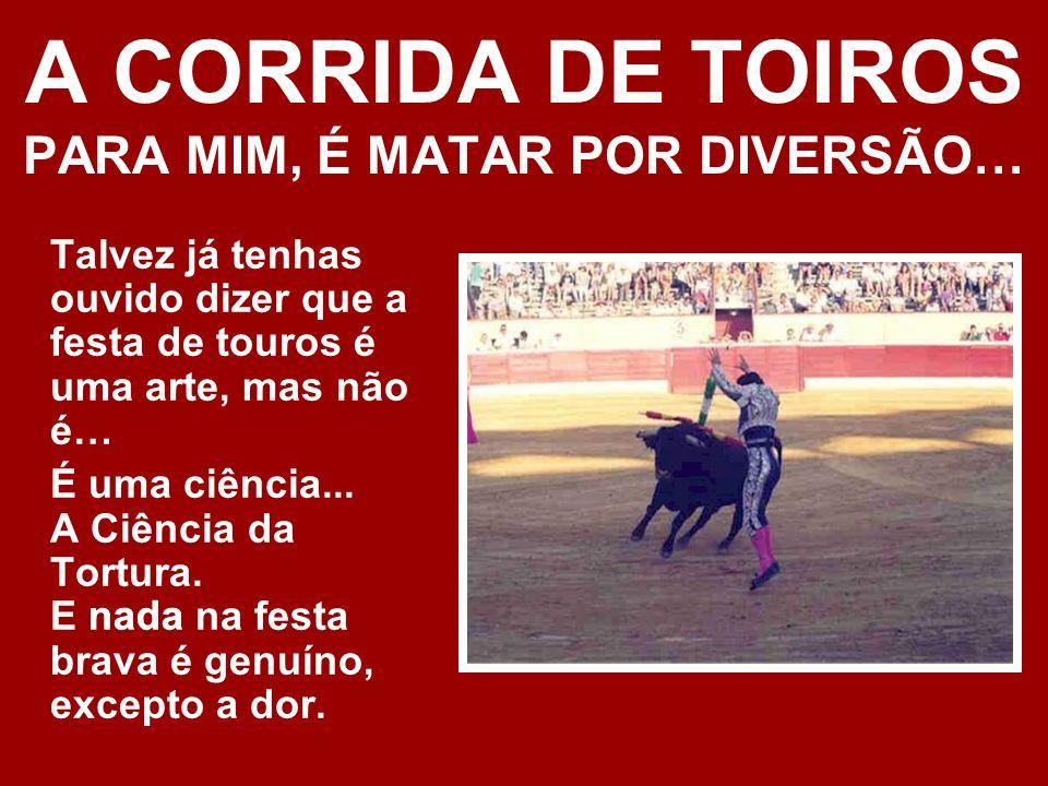 A CORRIDA DE TOIROS PARA MIM, É MATAR POR DIVERSÃO…