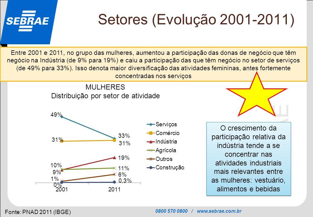 Distribuição por setor de atividade