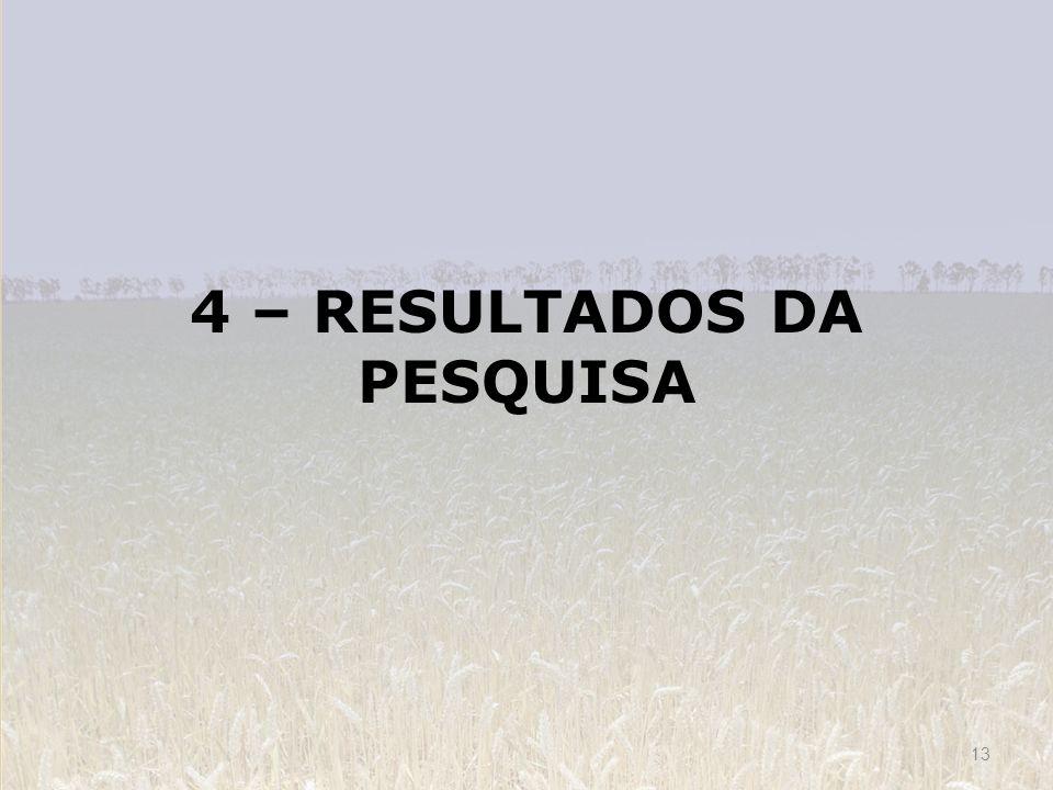 4 – RESULTADOS DA PESQUISA