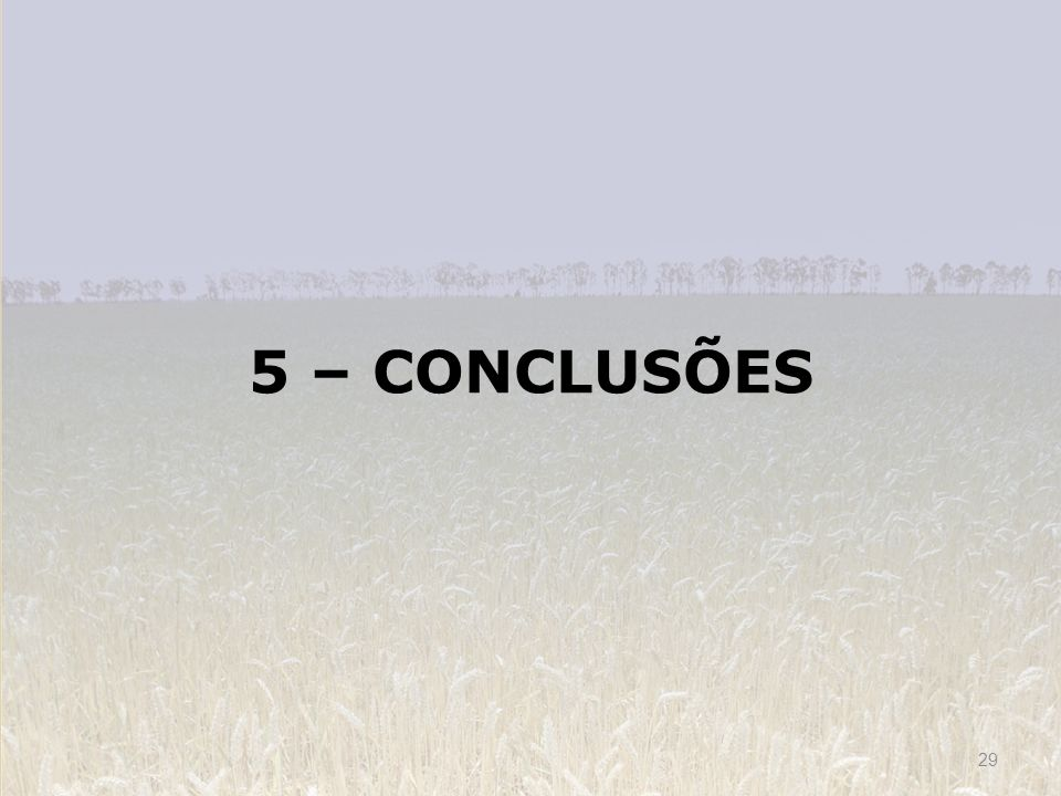 5 – CONCLUSÕES