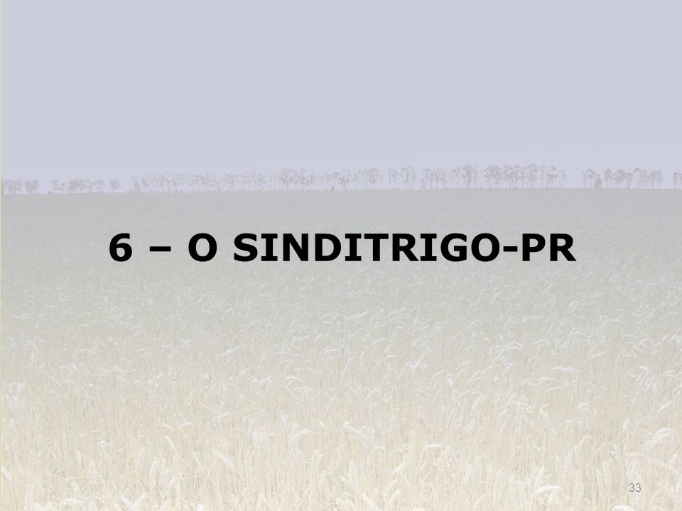 6 – O SINDITRIGO-PR