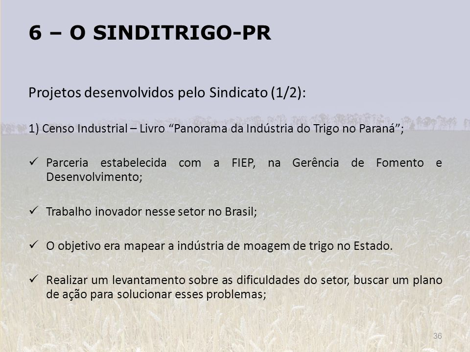 6 – O SINDITRIGO-PR Projetos desenvolvidos pelo Sindicato (1/2):