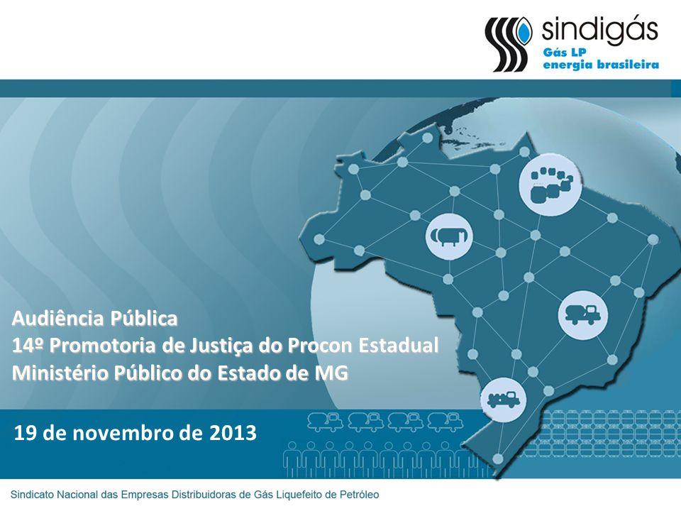 19 de novembro de 2013 Audiência Pública