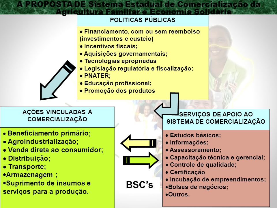 A PROPOSTA DE Sistema Estadual de Comercialização da Agricultura Familiar e Economia Solidária