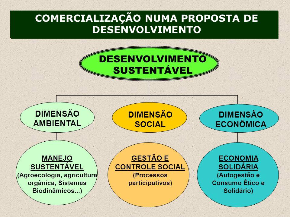 COMERCIALIZAÇÃO NUMA PROPOSTA DE DESENVOLVIMENTO