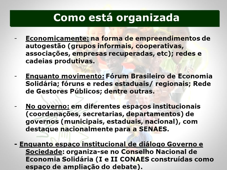 Como está organizada