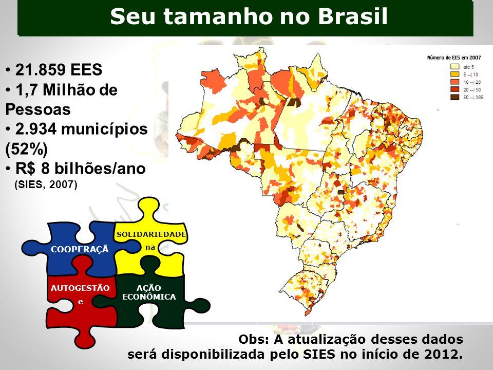 Seu tamanho no Brasil 21.859 EES 1,7 Milhão de Pessoas