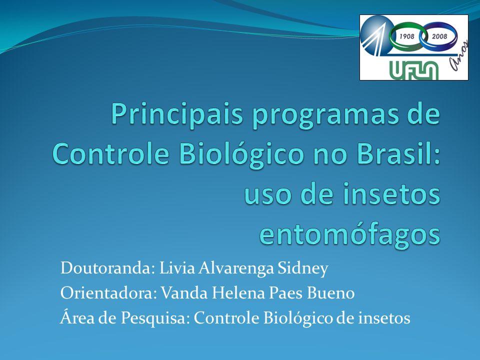 Principais programas de Controle Biológico no Brasil: uso de insetos entomófagos
