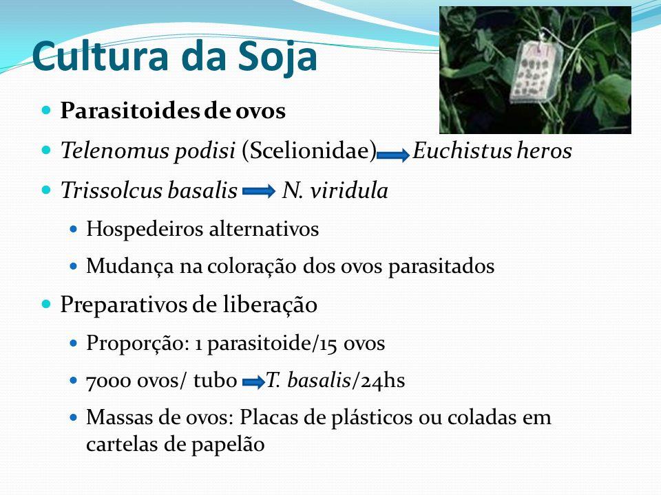 Cultura da Soja Parasitoides de ovos