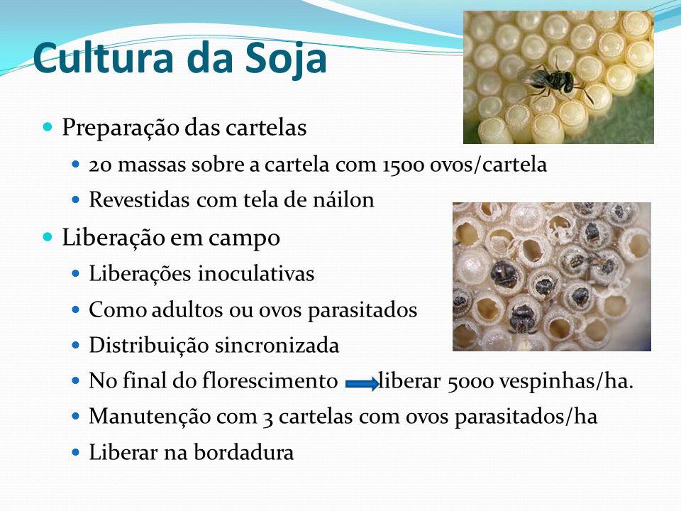 Cultura da Soja Preparação das cartelas Liberação em campo