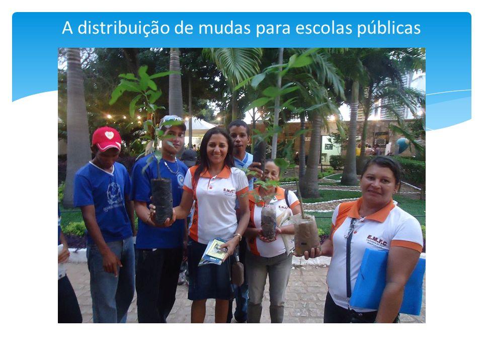 A distribuição de mudas para escolas públicas
