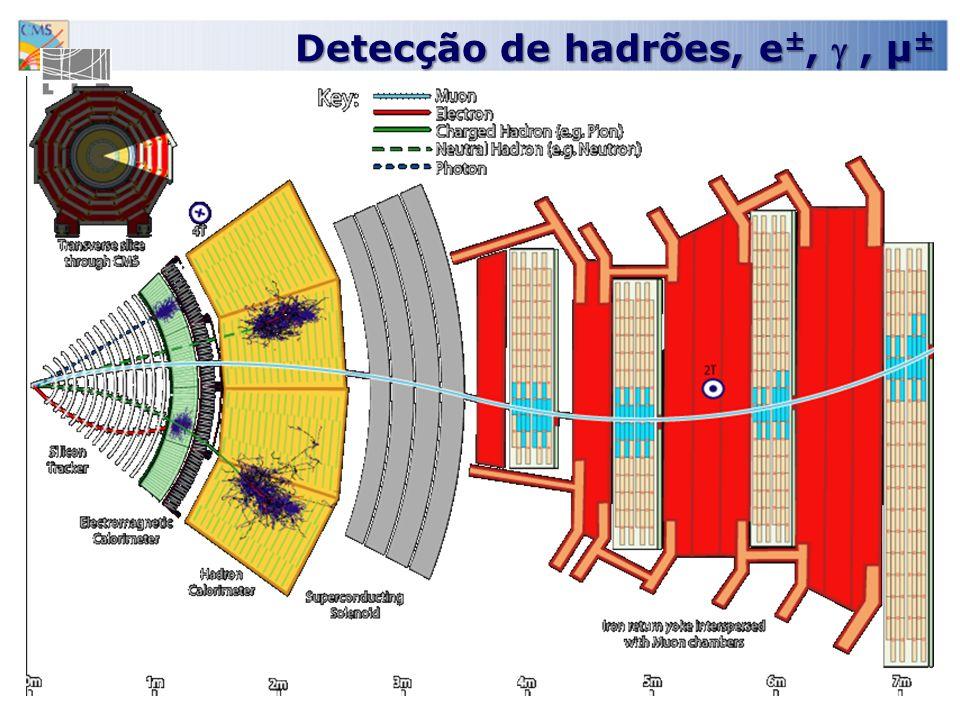 Detecção de hadrões, e±,  , µ±