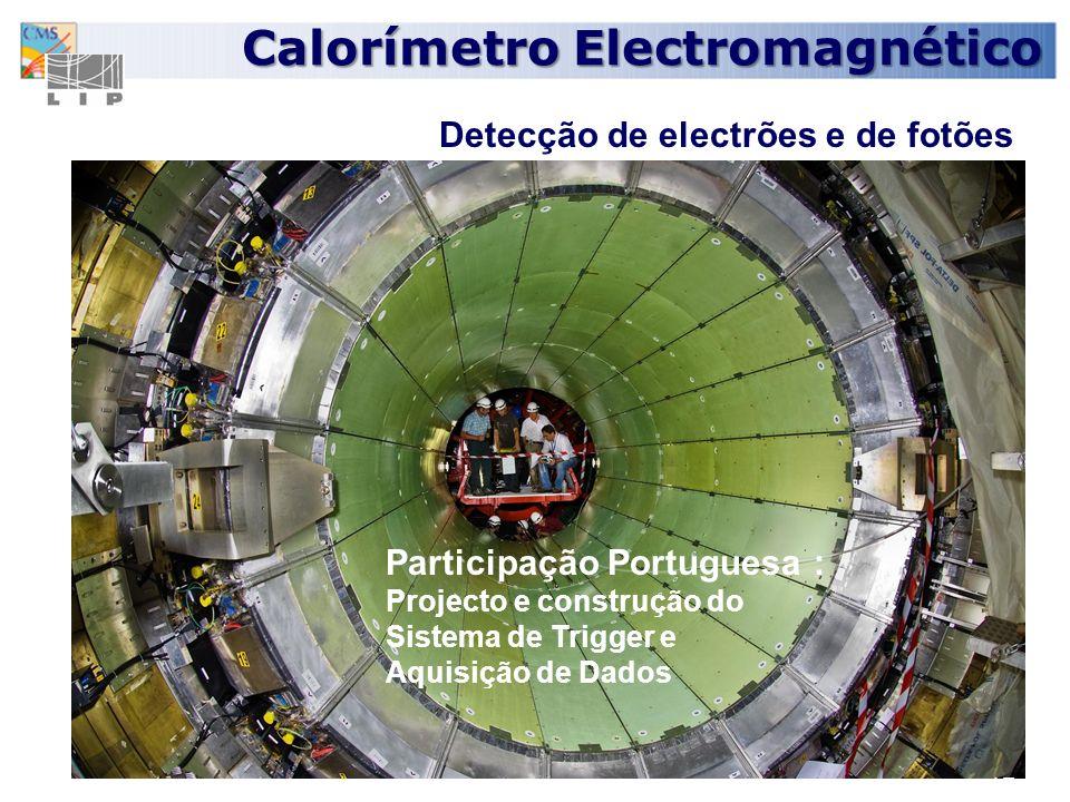 Calorímetro Electromagnético