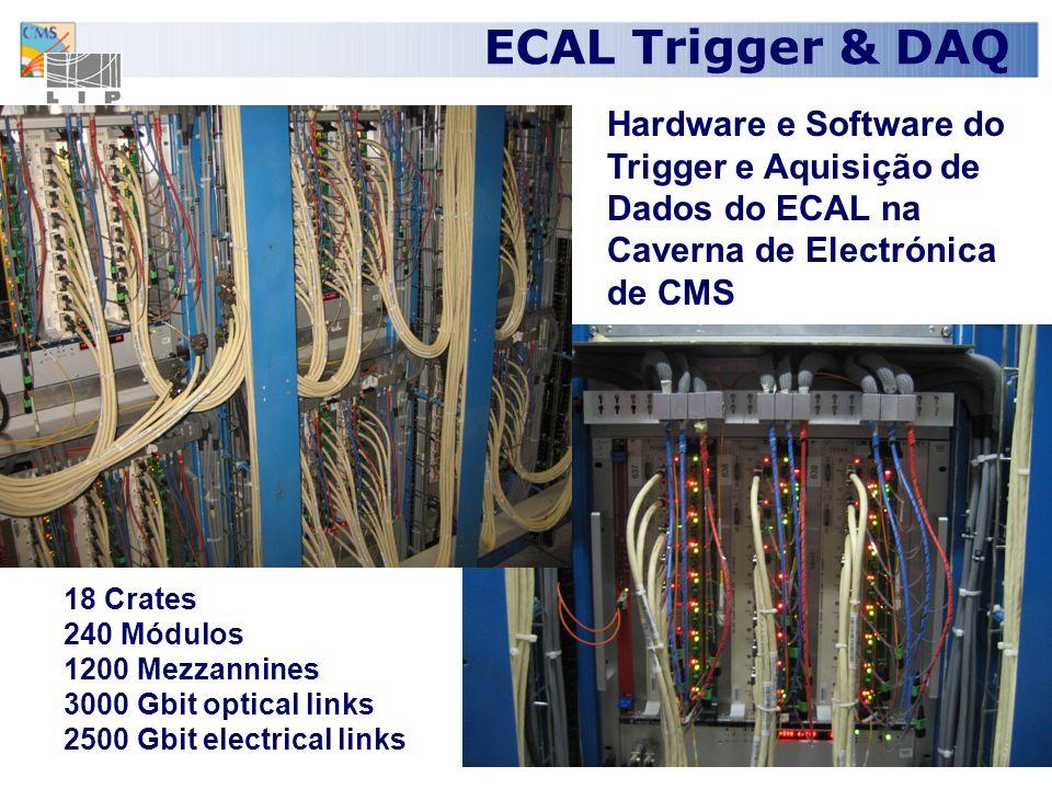 ECAL Trigger & DAQ Hardware e Software do Trigger e Aquisição de Dados do ECAL na Caverna de Electrónica de CMS.