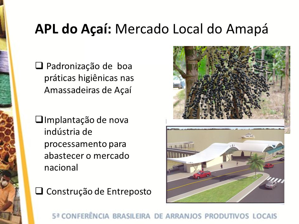 APL do Açaí: Mercado Local do Amapá