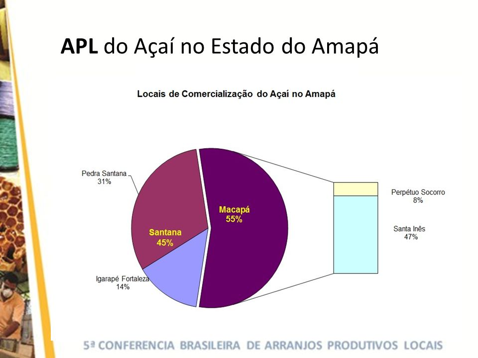 APL do Açaí no Estado do Amapá