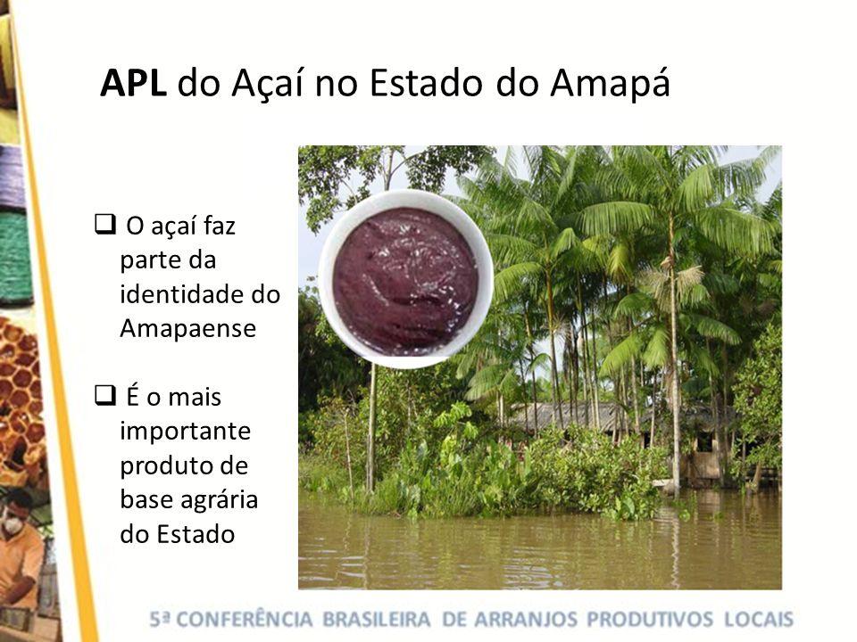 APL do Açaí no Estado do Amapá