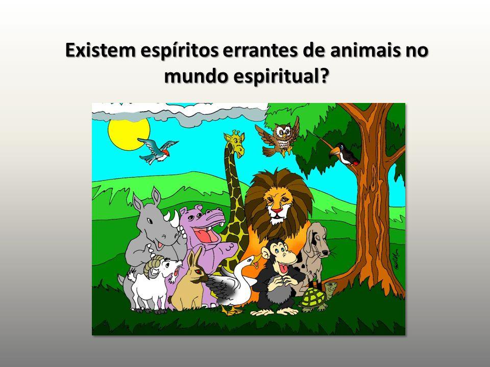Existem espíritos errantes de animais no mundo espiritual