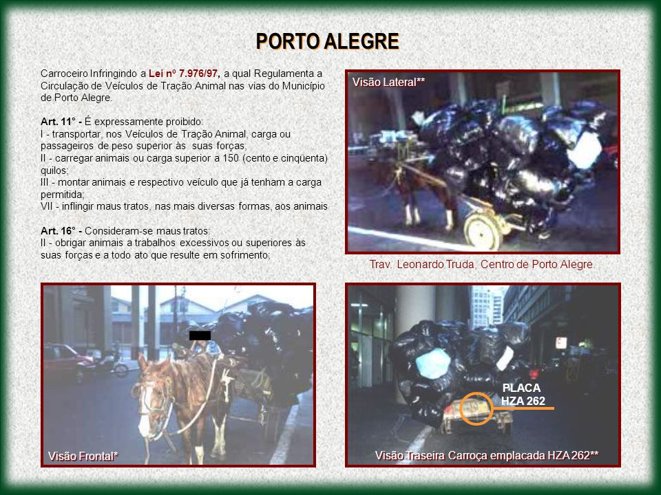 PORTO ALEGRE Visão Lateral**