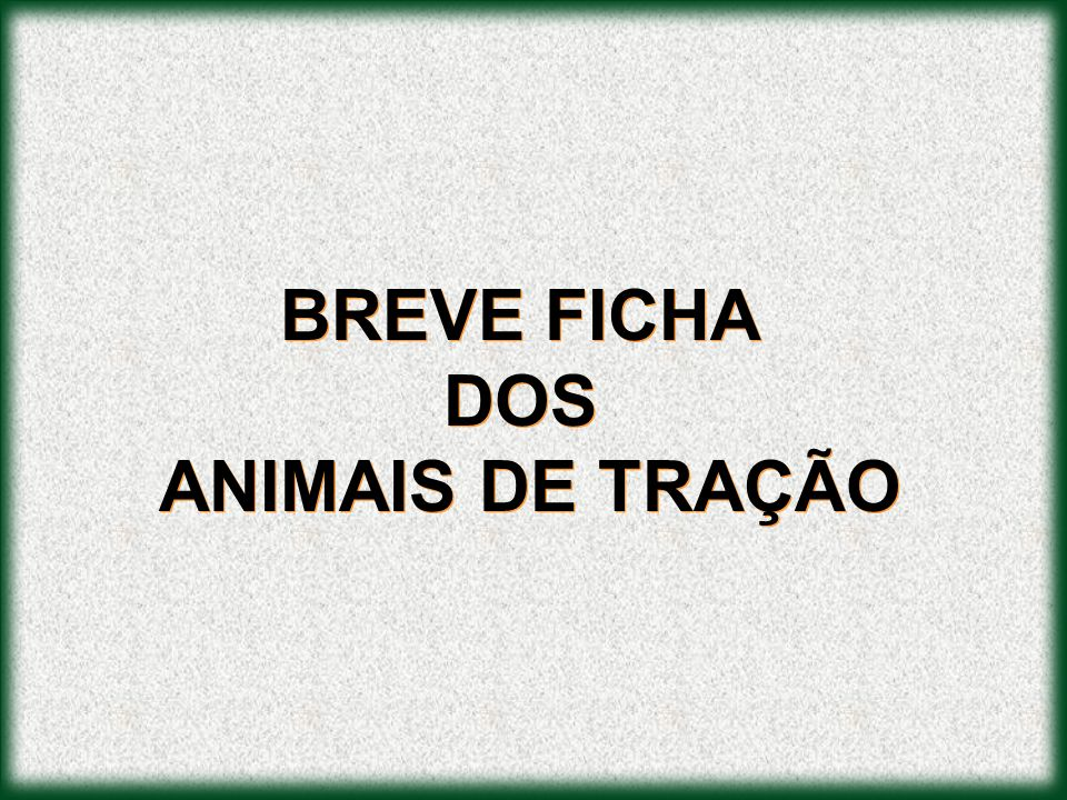 BREVE FICHA DOS ANIMAIS DE TRAÇÃO