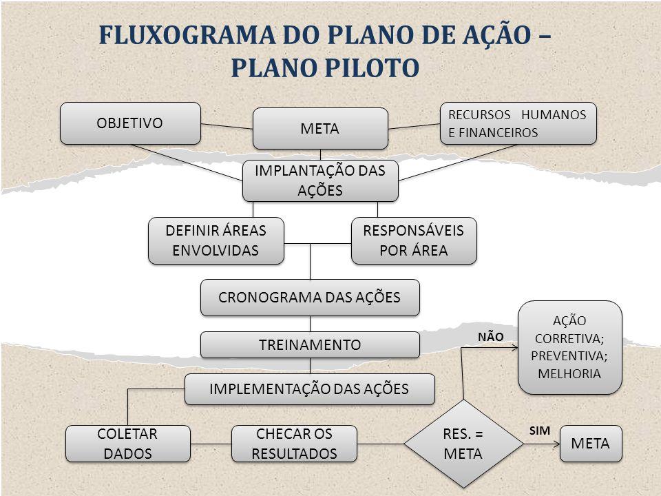 FLUXOGRAMA DO PLANO DE AÇÃO –