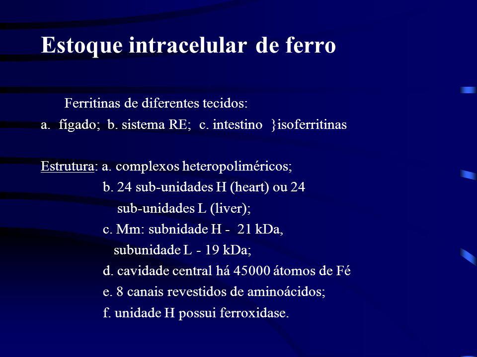 Estoque intracelular de ferro