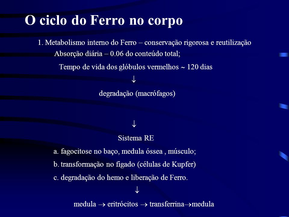O ciclo do Ferro no corpo