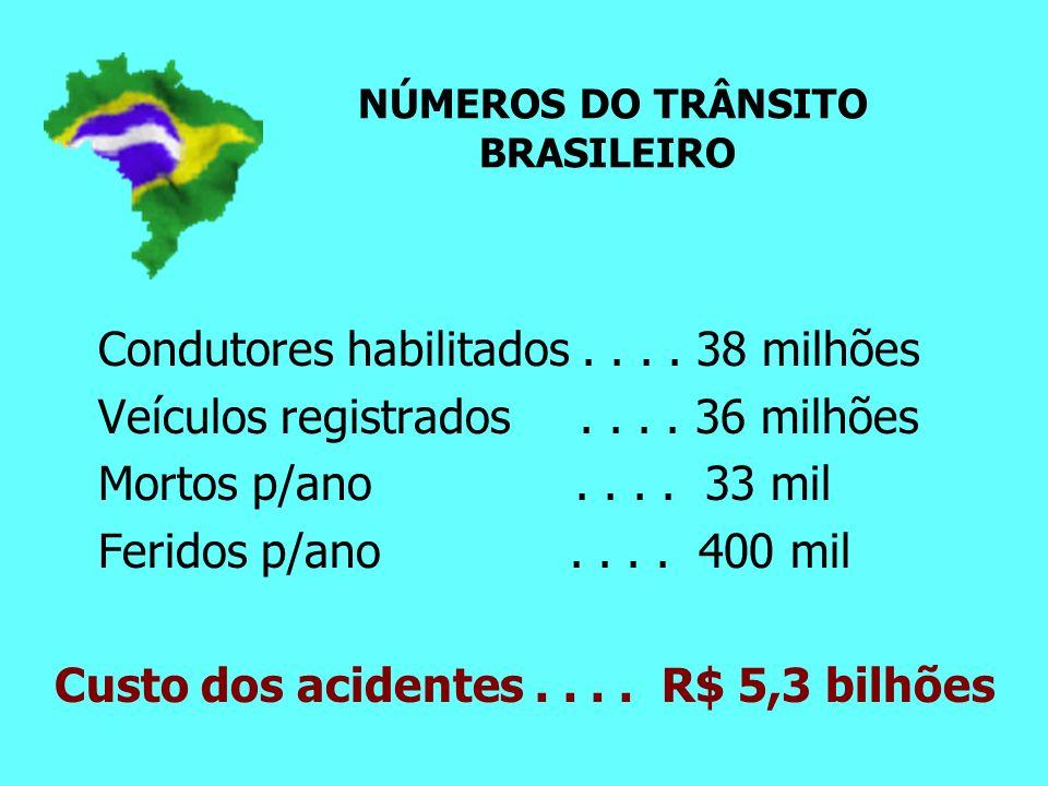 NÚMEROS DO TRÂNSITO BRASILEIRO