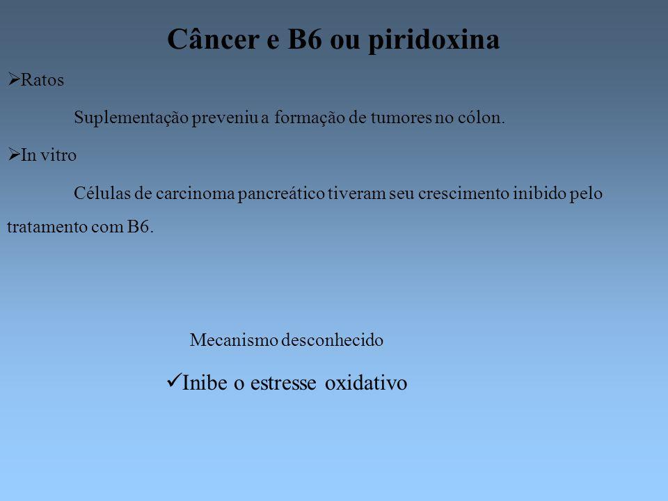 Câncer e B6 ou piridoxina