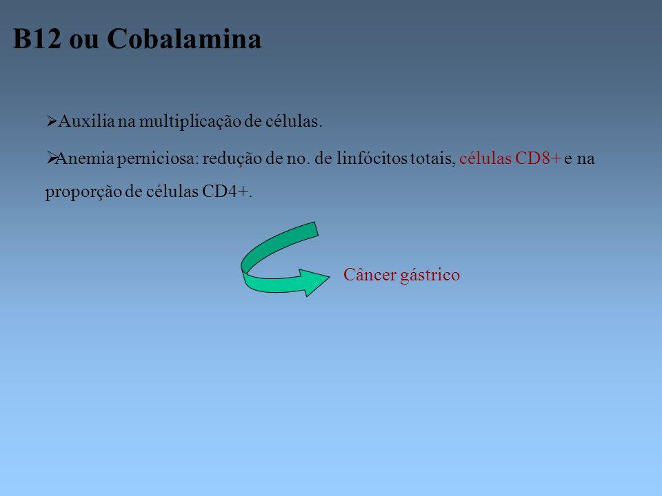 B12 ou Cobalamina Auxilia na multiplicação de células.