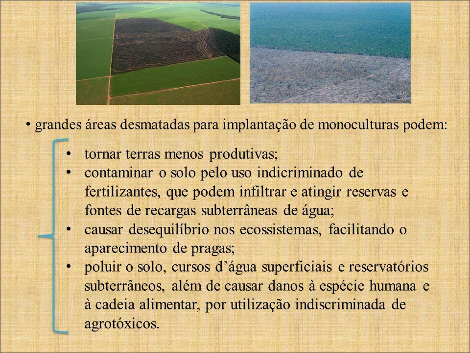 grandes áreas desmatadas para implantação de monoculturas podem: