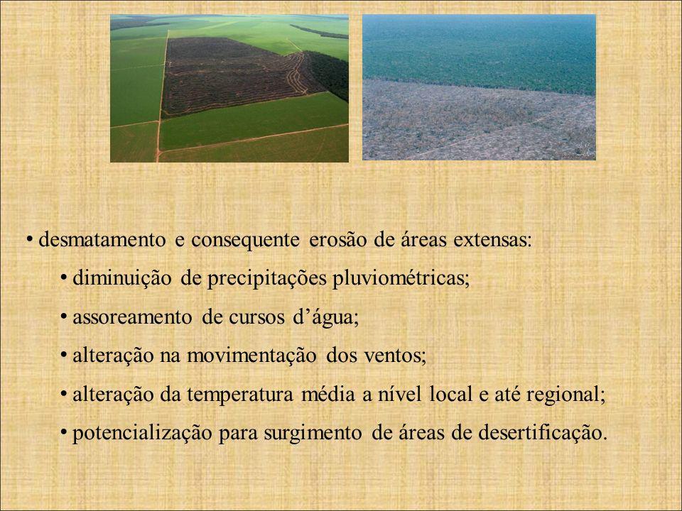 desmatamento e consequente erosão de áreas extensas: