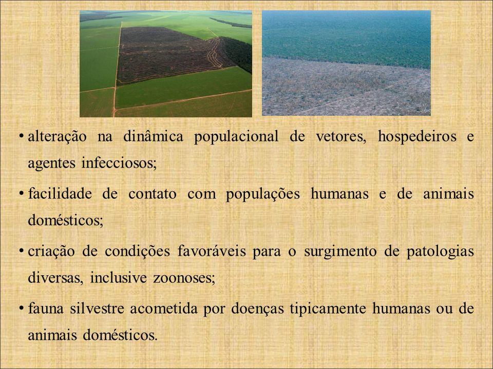 alteração na dinâmica populacional de vetores, hospedeiros e agentes infecciosos;