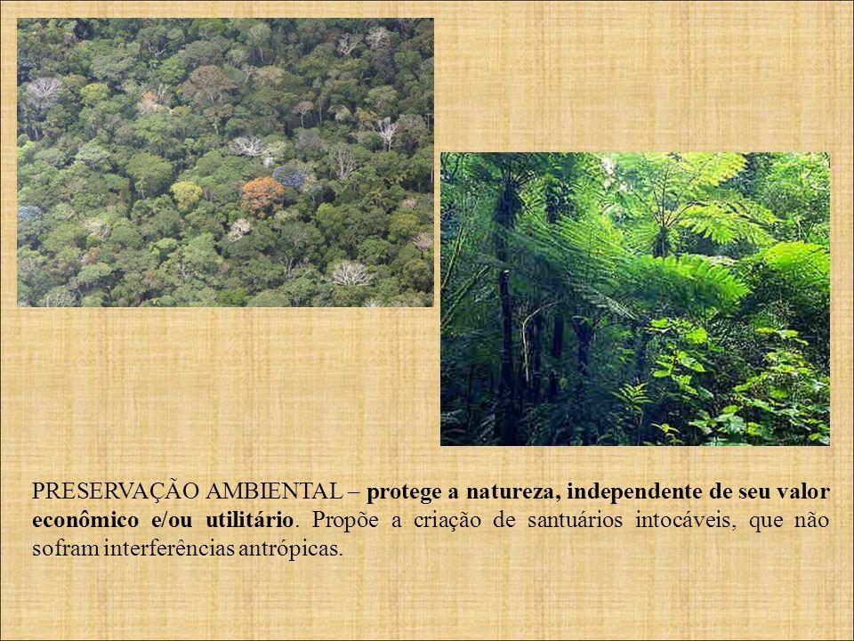 PRESERVAÇÃO AMBIENTAL – protege a natureza, independente de seu valor econômico e/ou utilitário.