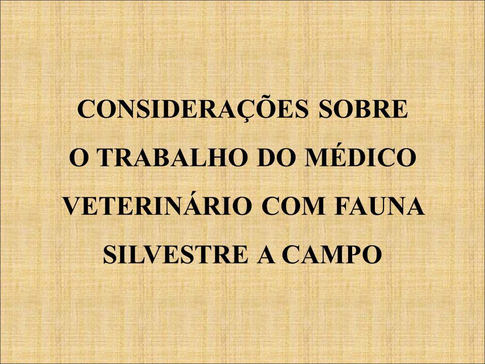 CONSIDERAÇÕES SOBRE O TRABALHO DO MÉDICO VETERINÁRIO COM FAUNA SILVESTRE A CAMPO