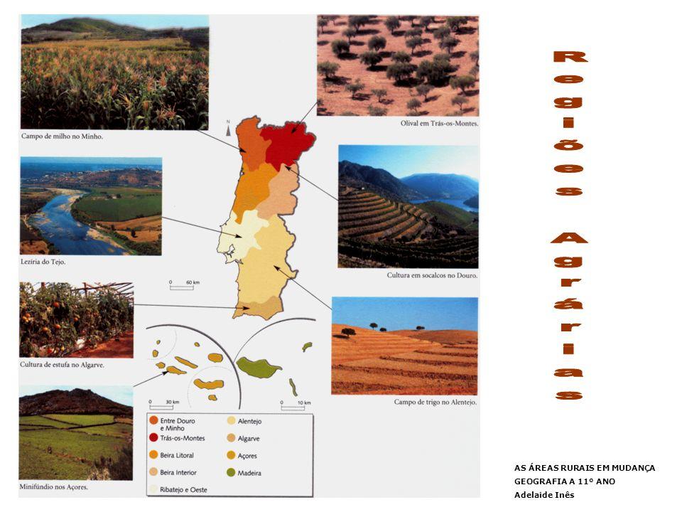 Regiões Agrárias AS ÁREAS RURAIS EM MUDANÇA GEOGRAFIA A 11º ANO