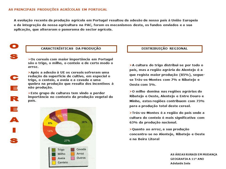 CARACTERÍSTICAS DA PRODUÇÃO DISTRIBUIÇÃO REGIONAL