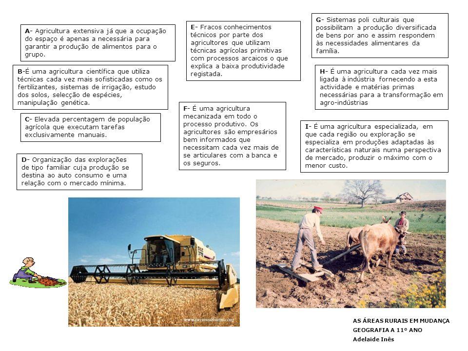 G- Sistemas poli culturais que possibilitam a produção diversificada de bens por ano e assim respondem às necessidades alimentares da família.