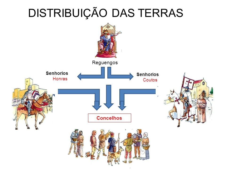 DISTRIBUIÇÃO DAS TERRAS