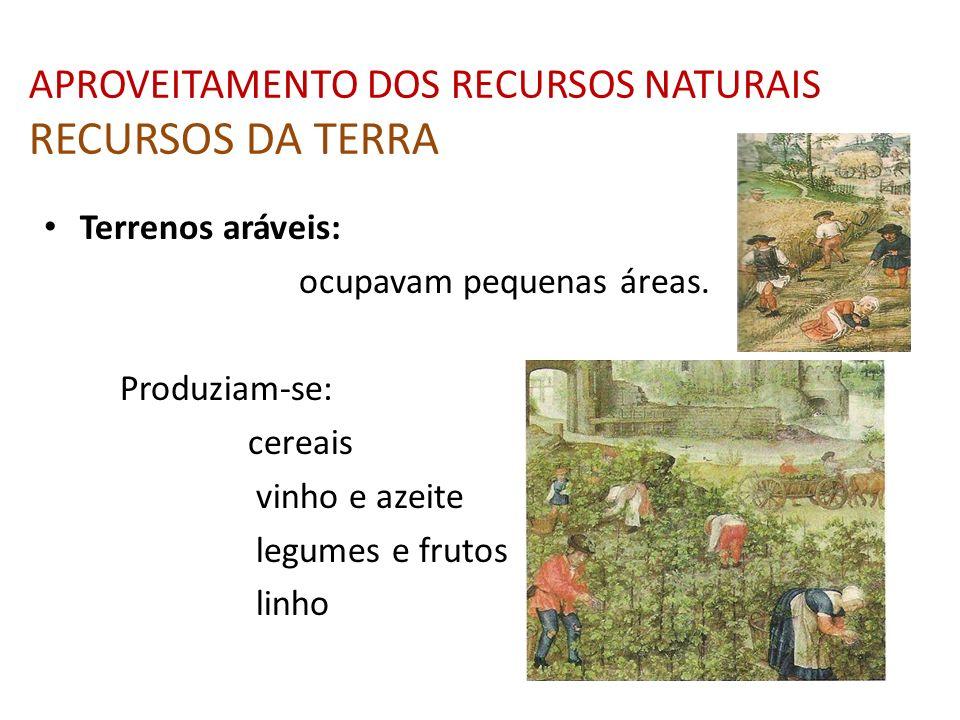 APROVEITAMENTO DOS RECURSOS NATURAIS RECURSOS DA TERRA