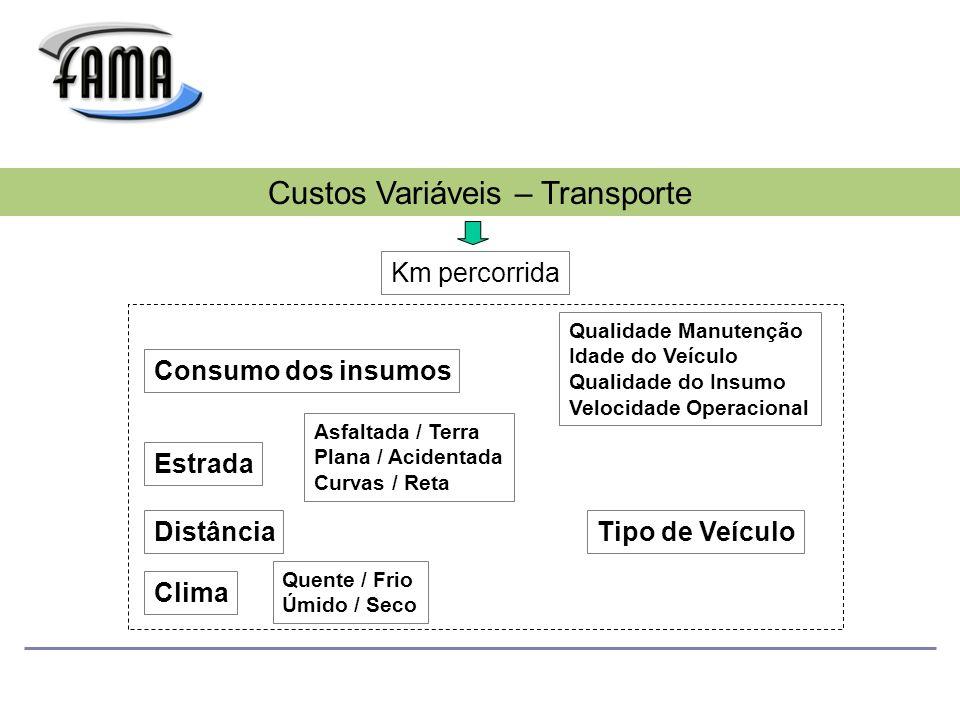Custos Variáveis – Transporte
