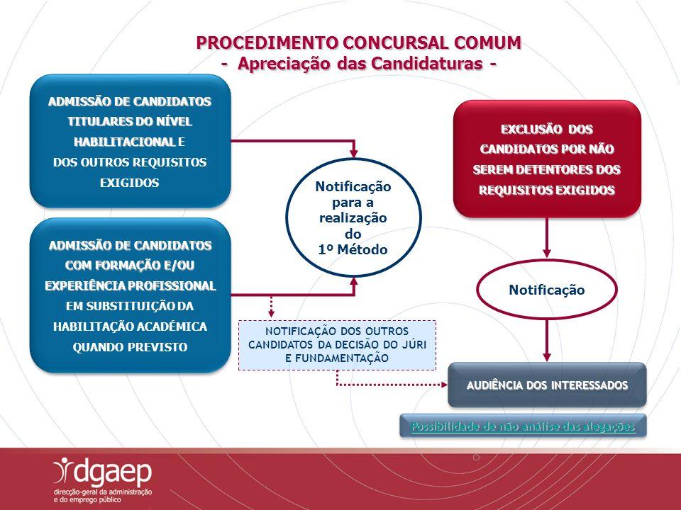 PROCEDIMENTO CONCURSAL COMUM - Apreciação das Candidaturas -