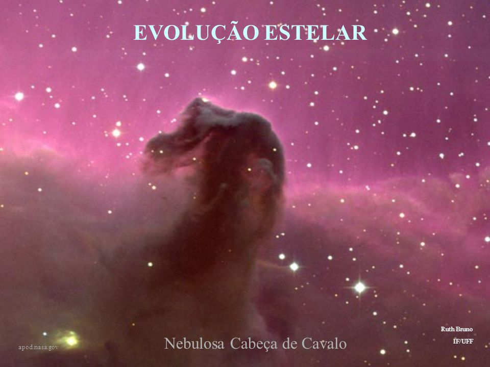 EVOLUÇÃO ESTELAR Nebulosa Cabeça de Cavalo Evolução estelar Ruth Bruno