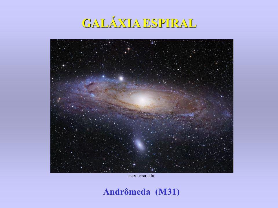 GALÁXIA ESPIRAL astro.wsu.edu Andrômeda (M31)