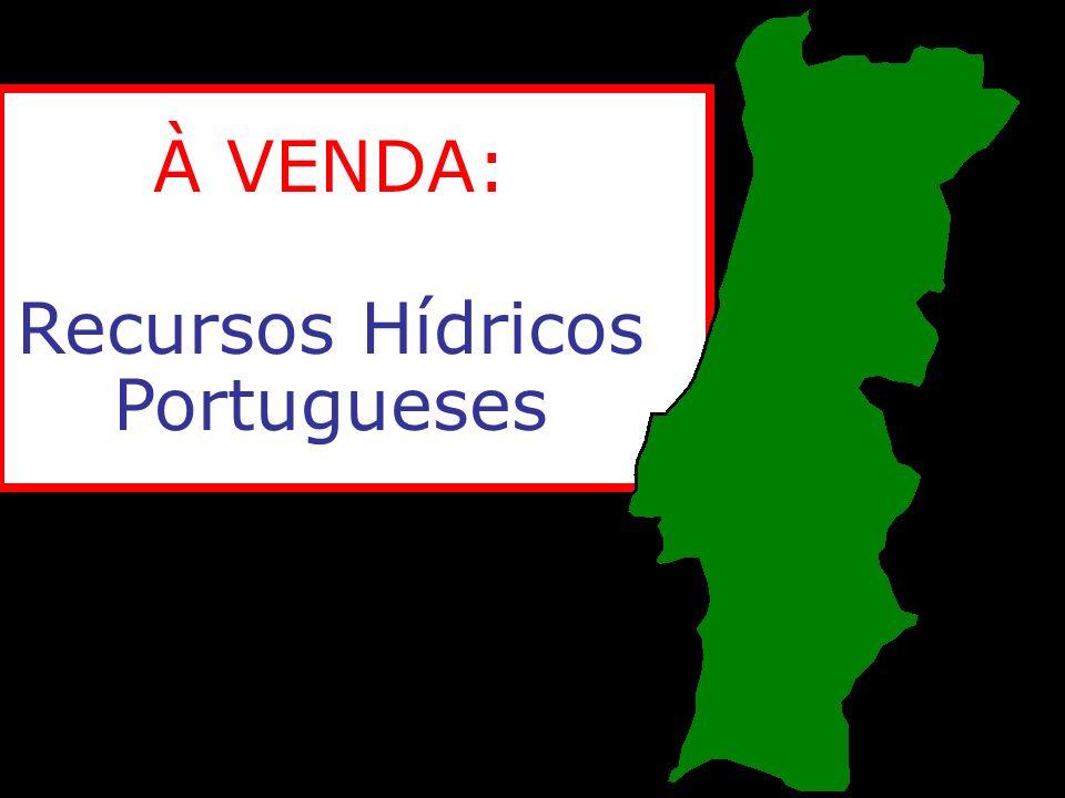 Recursos Hídricos Portugueses