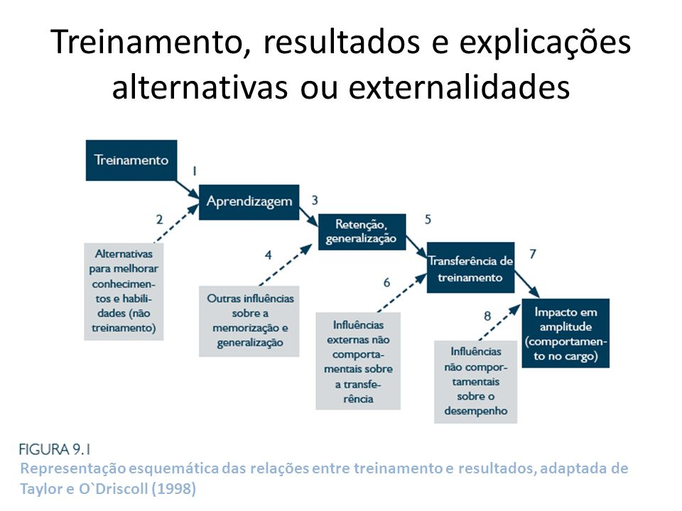 Treinamento, resultados e explicações alternativas ou externalidades