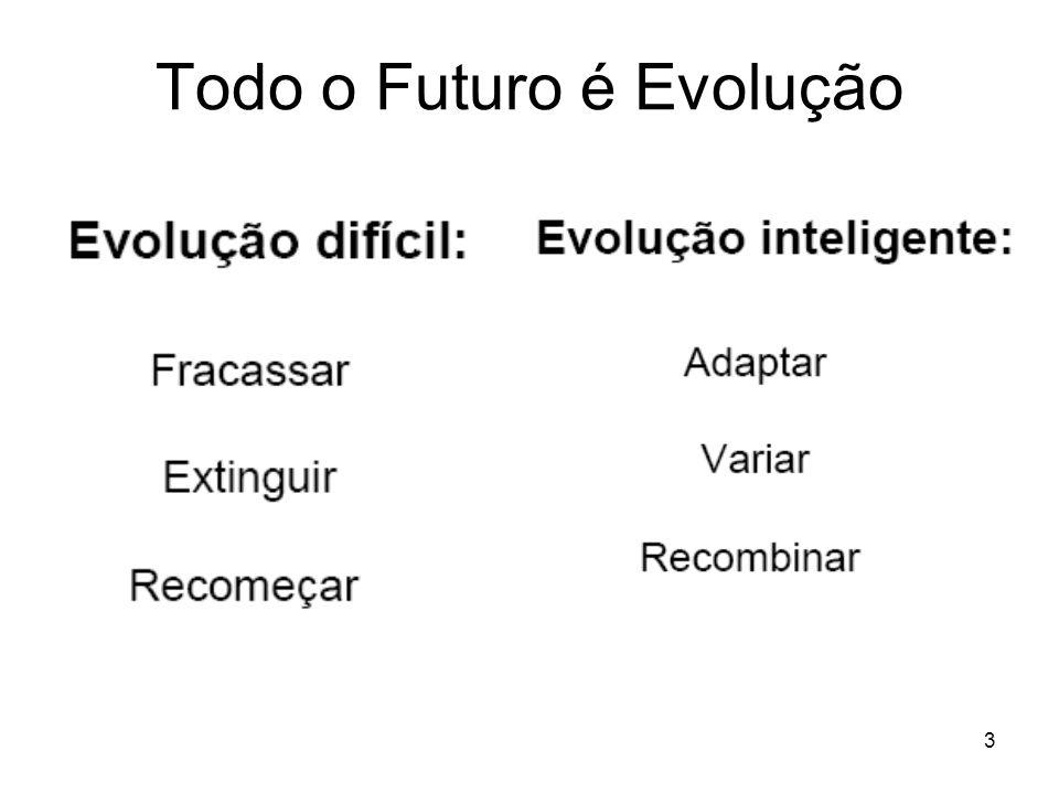 Todo o Futuro é Evolução