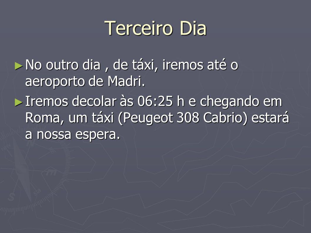 Terceiro Dia No outro dia , de táxi, iremos até o aeroporto de Madri.